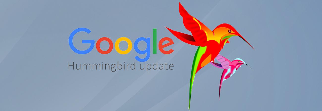 Google New Algorithm – Hummingbird