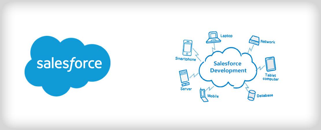 Sales Force Development